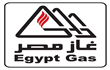 Egypt Gas losses widen to LE53.5 m ending June 2017