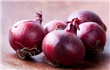 India may extend onion export ban to Feb to cap domestic prices